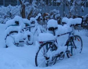 Winter_Sucks